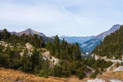 Weg aan Ofenpass - Fuorn-pas in Val Mustair van kanton Grisons, Zwitserland royalty-vrije stock foto