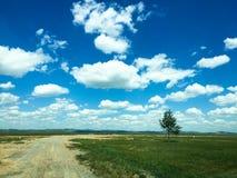 Weg aan Prairie onder de witte wolken in Binnenmongolië stock foto's