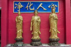 Weg aan Shatin 10000 Buddhas-Tempel, Hong Kong Stock Afbeelding