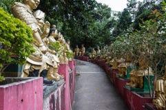 Weg aan Shatin 10000 Buddhas-Tempel, Hong Kong Royalty-vrije Stock Foto's