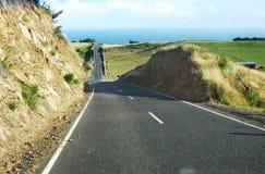 Weg aan strand bij Vreedzame oceaan, Nieuw Zeeland Royalty-vrije Stock Fotografie