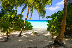 Weg aan tropisch strand stock foto's