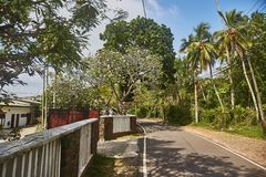 Weg aan wildernisstrand Unawatuna Hotel op de weg stock fotografie