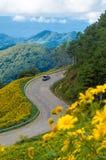 Weg aan zonnebloemheuvel met blauwe hemel, noordelijk Thailand royalty-vrije stock foto