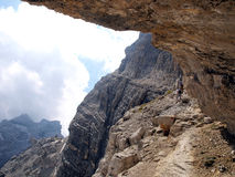 Weg Alfredo Benini in de Brenta-Dolomietbergen in Italië Royalty-vrije Stock Foto