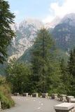 Weg in Alpen Stock Afbeeldingen