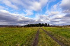 Weg auf dem Gebiet, das zu den Wald führt Lizenzfreie Stockfotos