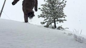 Weg auf dem Schnee stock footage