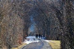 Weg auf einer schneebedeckten kleinen Straße in einem französischen Alpenwald stockfotos