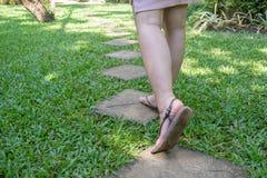 Weg auf Ziegelsteinbahnen im grünen Rasen Stockfoto
