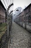 Weg in Auschwitz Lizenzfreies Stockfoto