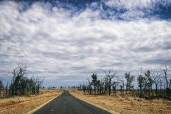 Weg in Australië Stock Foto's