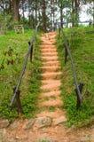 Weg in Aziatische tuin Royalty-vrije Stock Foto's