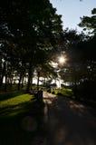 Weg bei Sonnenaufgang stockfotografie