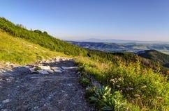 Weg in bergen Stock Foto