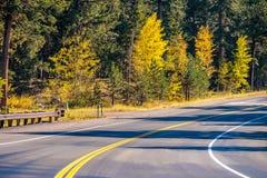 Weg bij de herfst in Colorado, de V.S. Stock Foto