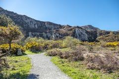 Weg bij het Park van het Golfbrekerland op Anglesey in Wales - het Verenigd Koninkrijk royalty-vrije stock foto