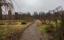Weg bij park bij bewolkte de herfstdag Royalty-vrije Stock Afbeeldingen