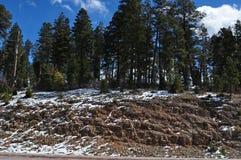 Weg 54 bis zu Cloudcroft, New Mexiko Stockfotos