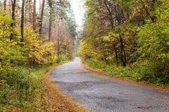 Weg, bos, de herfst, landschap, perspectief, achtergrond Royalty-vrije Stock Afbeeldingen