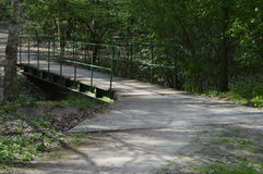 Weg in bos met brug en bezinningen van zon Stock Fotografie