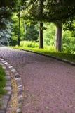Weg in bos onder bomen Spoortegels in de zomerpark Royalty-vrije Stock Foto's