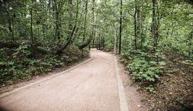 Weg in bospark Stock Foto's