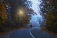 Weg in de avond, de herfst, mist, kinderen op de weg, stock afbeeldingen