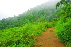 Weg in de berg die met mist wordt behandeld Royalty-vrije Stock Foto