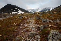 Weg in de bergen Royalty-vrije Stock Foto