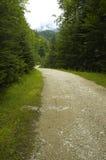 Weg in de bergen stock afbeeldingen