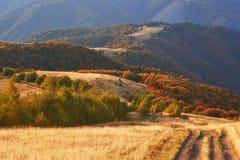 Weg in de bergen Het prachtige landschap van de de herfstberg majestueuze, donkere wolken in zonlicht net bos  Royalty-vrije Stock Foto