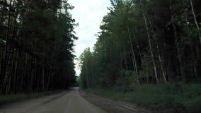 Weg in de bosmening van de auto stock footage