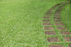 Weg in de groene grastuin Stock Foto