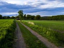 Weg in de kant van het land Stock Foto