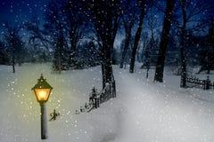 Weg in de Sneeuw Royalty-vrije Stock Foto
