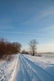 Weg in de sneeuw Stock Afbeeldingen