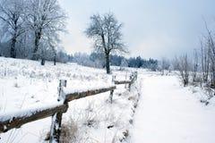 Weg in de winter Stock Foto's