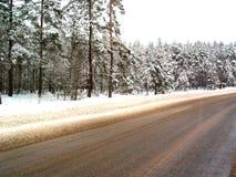 Weg in de winter Royalty-vrije Stock Fotografie