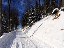 Weg in de winter in bergen stock afbeelding