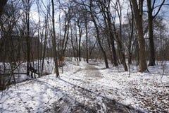 Weg in de winter met sneeuw in park in Duitsland Stock Foto's