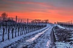 Weg in de winteravond Royalty-vrije Stock Afbeeldingen