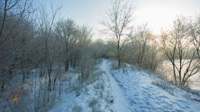 Weg in de winterpark bij ochtend stock footage