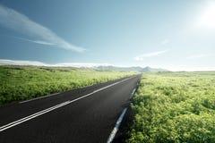 Weg in de zomer IJsland Stock Foto's