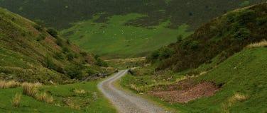 Weg in den Brecon-Leuchtfeuern Stockbild