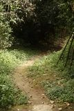 Weg, der weg in den Abstand führt Stockbilder