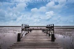 Weg in der Mangrove Stockbild