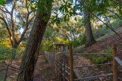 Weg, der zum alten japanischen Haus im Wald während des Herbstes geht stockbilder