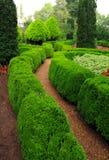 Weg des üppigen Gartens Stockfoto