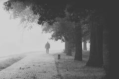 Weg des alten Mannes in den Nebel, Schwarzweiss Lizenzfreie Stockfotografie
